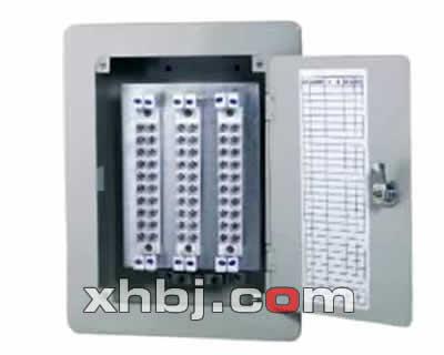 壁挂式电话分线箱(30对)