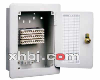 加工壁挂式电话分线箱(30对)厂家