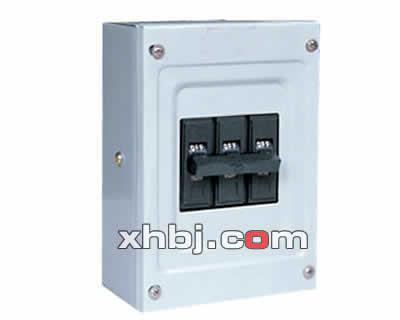 格式低压配电箱