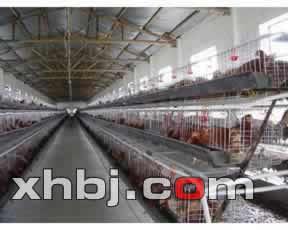 香河鸡笼场