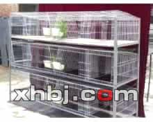 香河板金网提供生产兔