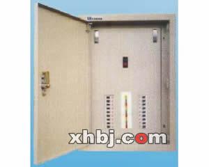 防护型排骨配电箱